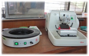 Microtome and tissue Floathing bath